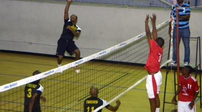 volley ball tigers